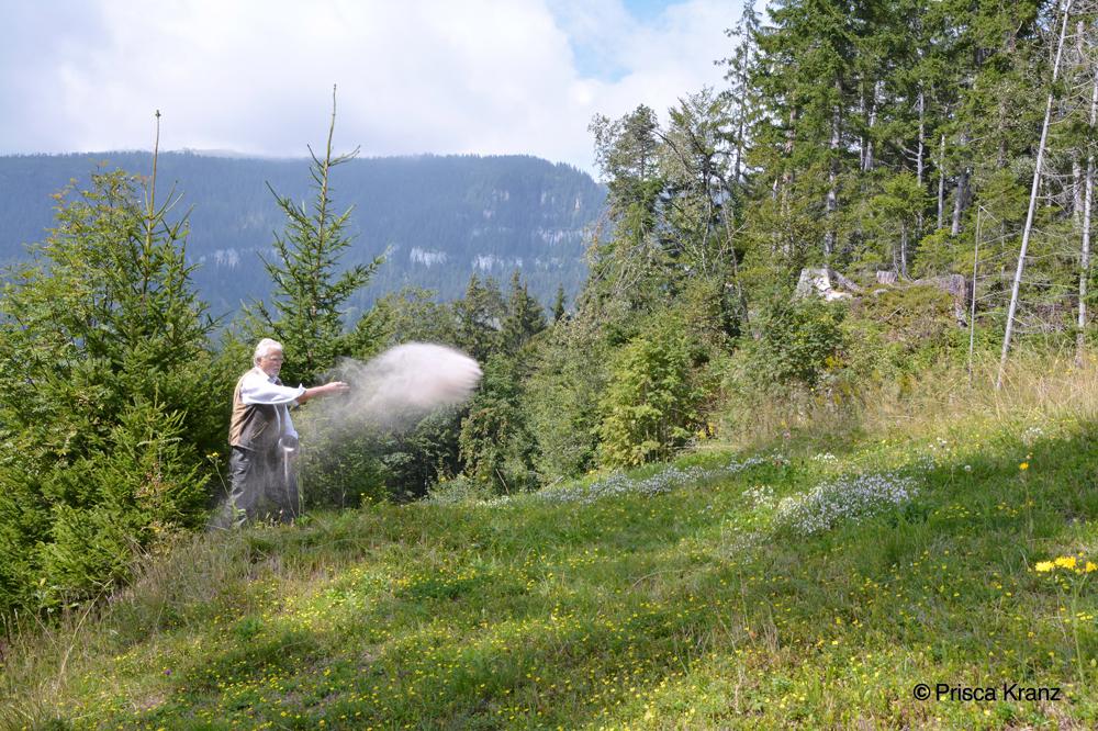 Ein Mann steht am Waldrand und streut die Asche einer Urne in die Wiese
